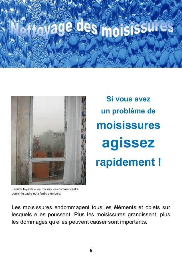 Guide sur les moisissures l 39 humidite et la maison galenus for Moisissure fenetre bois