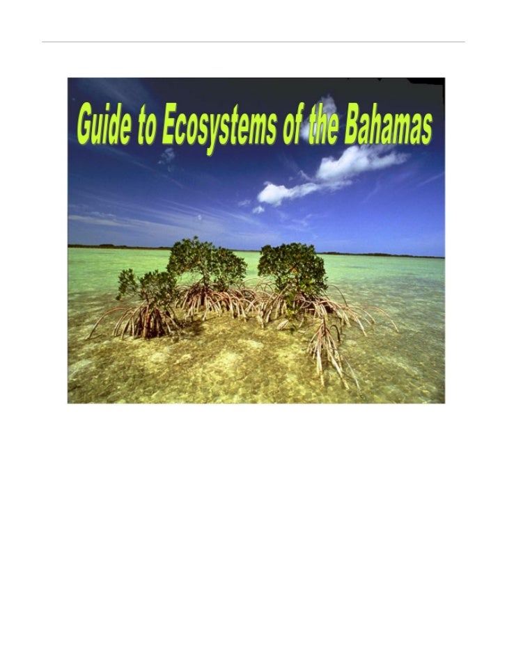 Guide to Marine and Terrestrial Ecosystems                                                    Of The Bahamas              ...