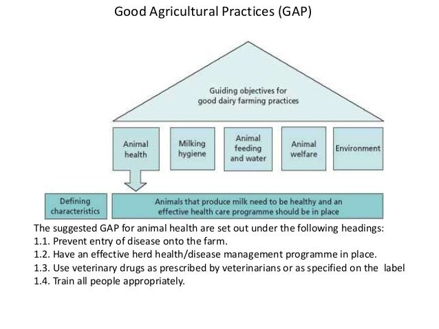 guide to good dairy farming practice rh pt slideshare net Good Farming Practices PDF Logo guide to good dairy farming practice pdf