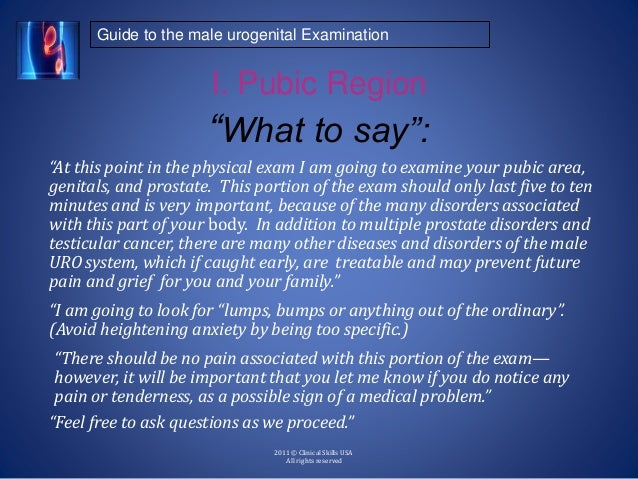 """Guide to the male urogenital Examination 2011 © Clinical Skills USA All rights reserved I. Pubic Region """"At this point in ..."""