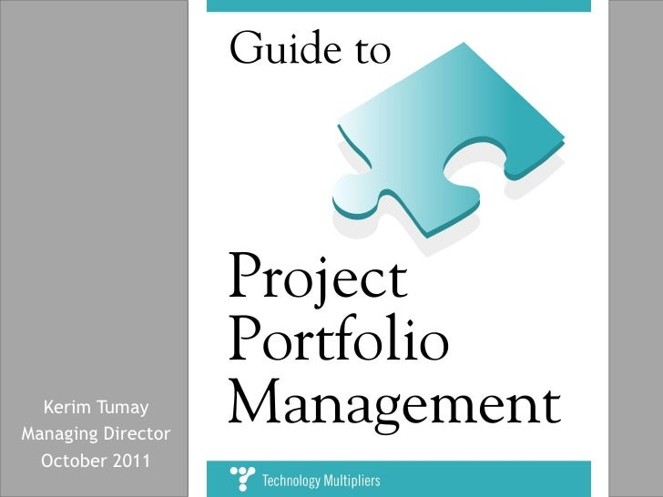 guide to project portfolio management. Black Bedroom Furniture Sets. Home Design Ideas