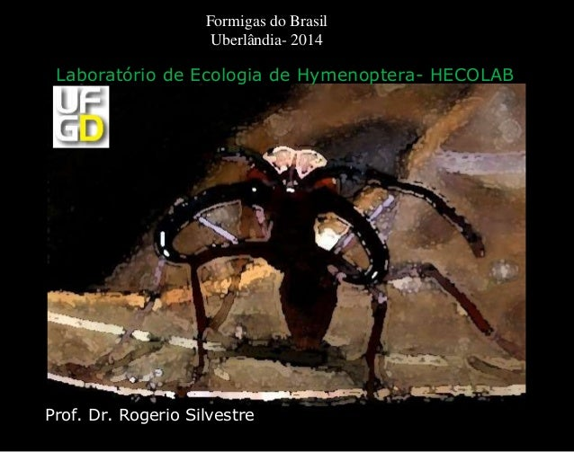 Prof. Dr. Rogerio Silvestre Laboratório de Ecologia de Hymenoptera- HECOLAB Formigas do Brasil Uberlândia- 2014