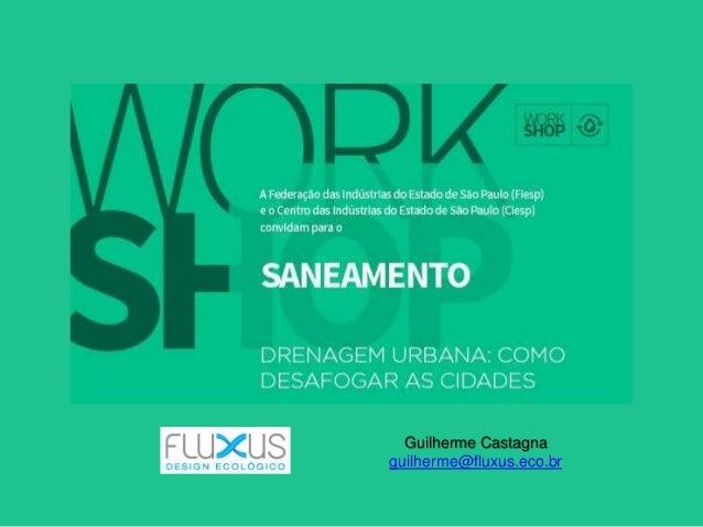 Guilherme Castagna guilherme@fluxus.eco.br