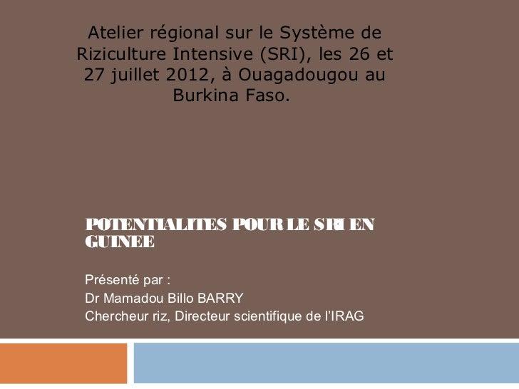 Atelier régional sur le Système deRiziculture Intensive (SRI), les 26 et 27 juillet 2012, à Ouagadougou au             Bur...