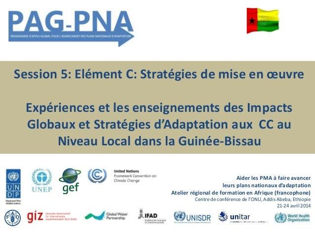 Session 5: Elément C: Stratégies de mise en œuvre Expériences et les enseignements des Impacts Globaux et Stratégies d'Ada...