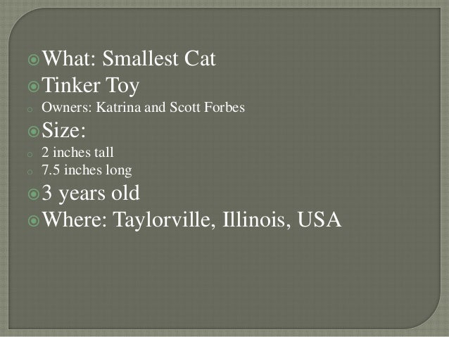 6 what smallest cat