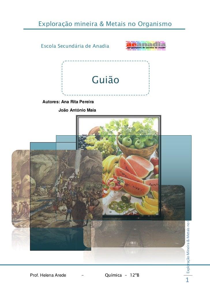 Exploração mineira & Metais no Organismo     Escola Secundária de Anadia                             Guião      Autores: A...