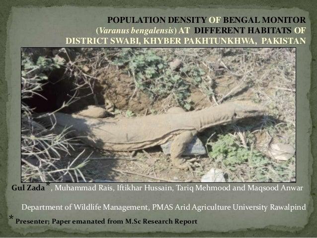 POPULATION DENSITY OF BENGAL MONITOR(Varanus bengalensis) AT DIFFERENT HABITATS OFDISTRICT SWABI, KHYBER PAKHTUNKHWA, PAKI...