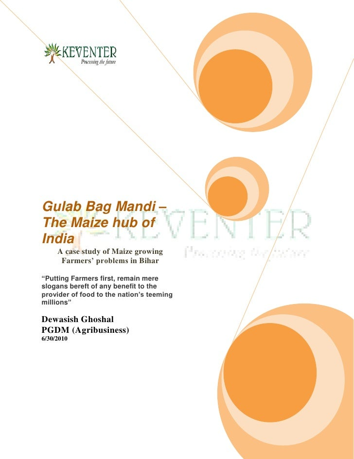 """Gulab Bag Mandi – The Maize hub of India      A case study of Maize growing       Farmers' problems in Bihar  """"Putting Far..."""