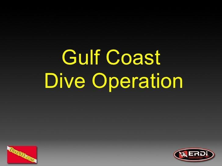 Gulf Coast  Dive Operation