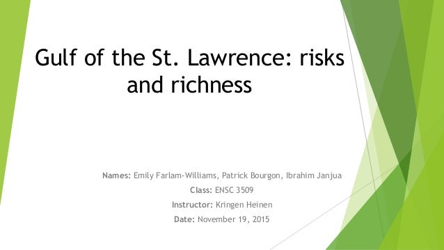 Gulf of the St. Lawrence: risksand richnessNames: Emily Farlam-Williams, Patrick Bourgon, Ibrahim JanjuaClass: ENSC 350...