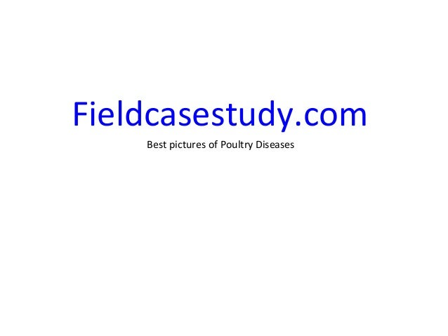 Gumboro diseases, infectious bursal disease symptoms in chickens