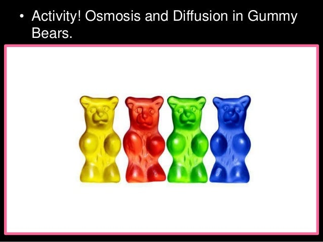 Osmosis Gummy Bear Lesson PowerPoint, Cell Biology, Cell Transport Slide 3