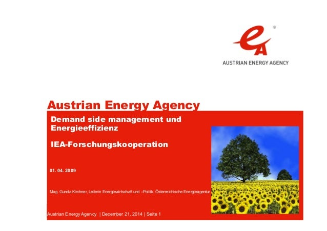 Austrian Energy Agency Austrian Energy Agency | December 21, 2014 | Seite 1 Demand side management und Energieeffizienz IE...