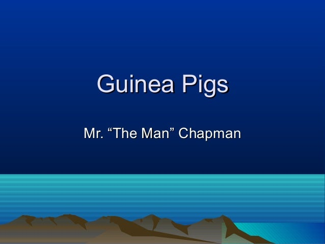 "Guinea PigsMr. ""The Man"" Chapman"