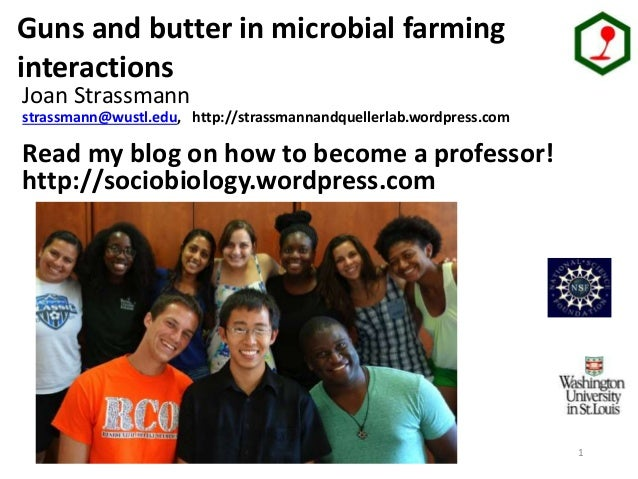 1 Strassmann/ Queller lab group Guns and butter in microbial farming interactions Joan Strassmann strassmann@wustl.edu, ht...