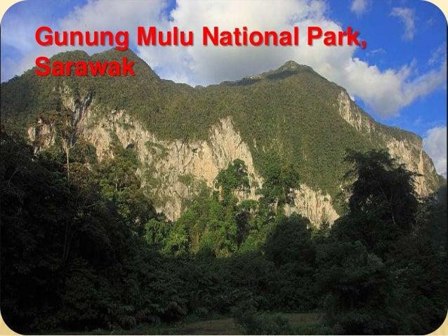 Gunung Mulu National Park,Sarawak