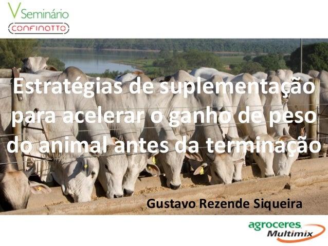 Estratégias de suplementação para acelerar o ganho de peso do animal antes da terminação Gustavo Rezende Siqueira