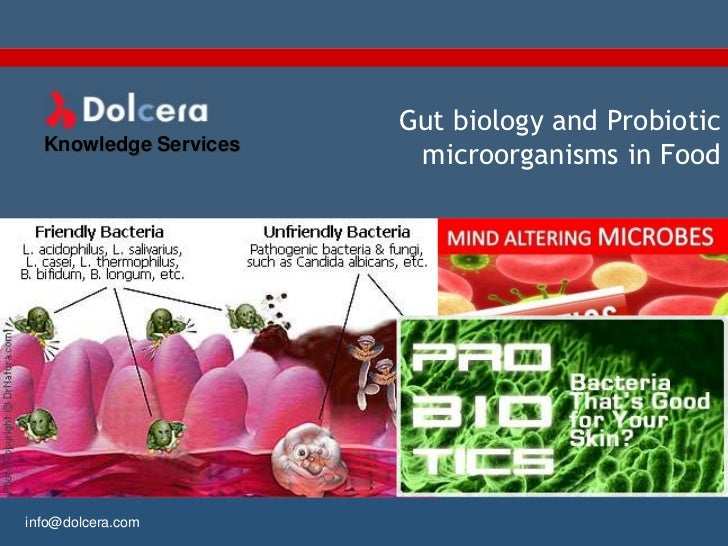 Gut biology and Probiotic  Knowledge Services                        microorganisms in Foodinfo@dolcera.com