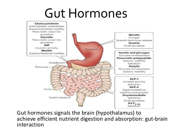 Gut hormone and its implication in glucose homeostasis