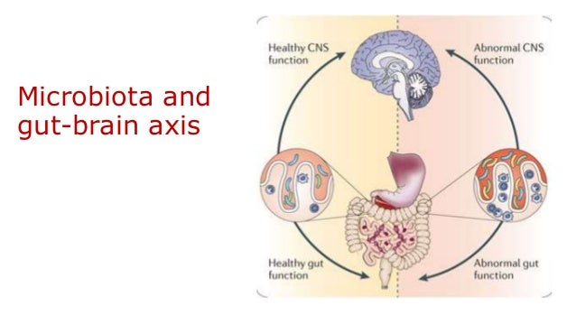 Gut microbiota in health and disease