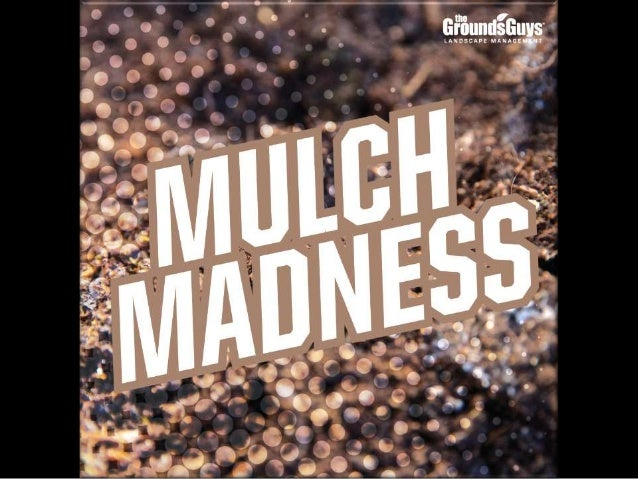 Canada: Mulch Madness | Tips from The Grounds Guys@ Landscape Management