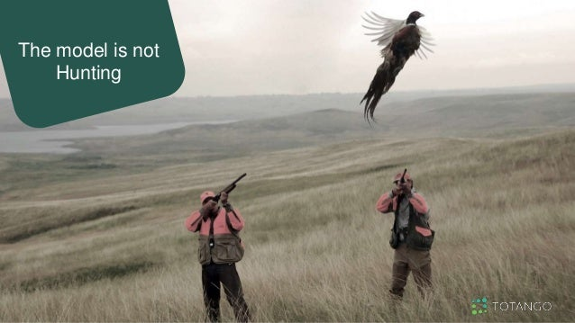 The model is not Hunting