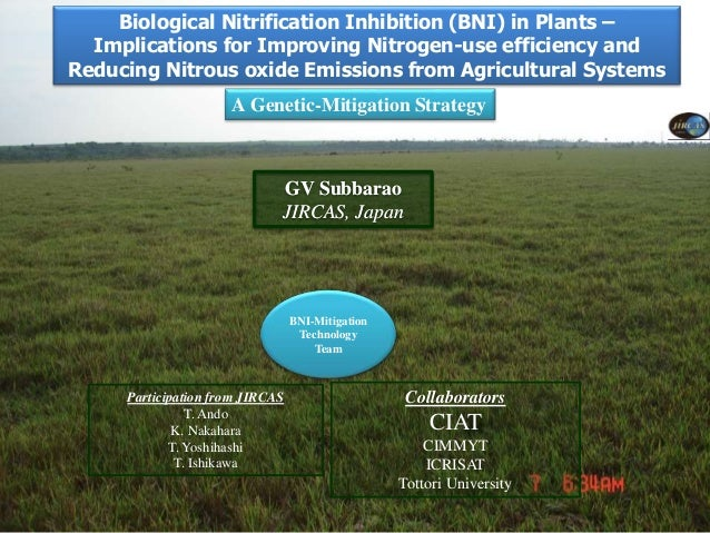Biological nitrification inhibition (BNI) in plants: Implications for…