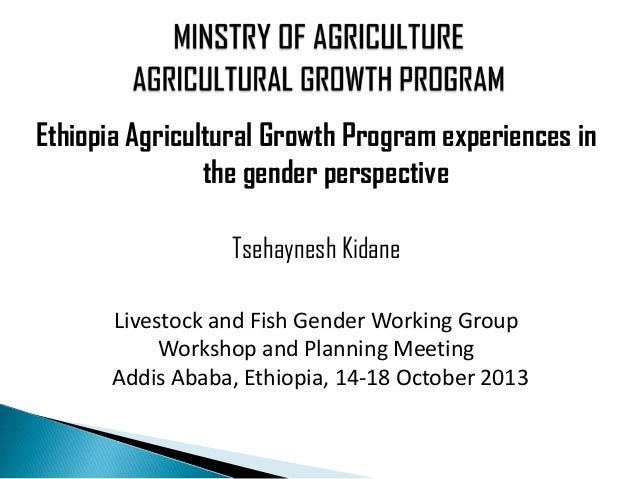 Ethiopia Agricultural Growth Program experiences in the gender perspective Tsehaynesh Kidane Livestock and Fish Gender Wor...