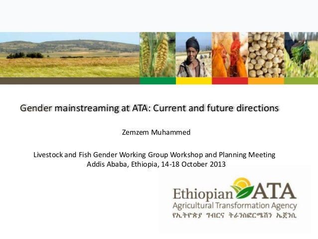 Gender mainstreaming at ATA: Current and future directions Zemzem Muhammed Livestock and Fish Gender Working Group Worksho...