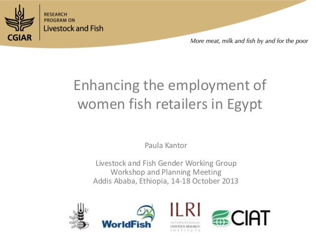 Enhancing the employment of women fish retailers in Egypt Paula Kantor Livestock and Fish Gender Working Group Workshop an...