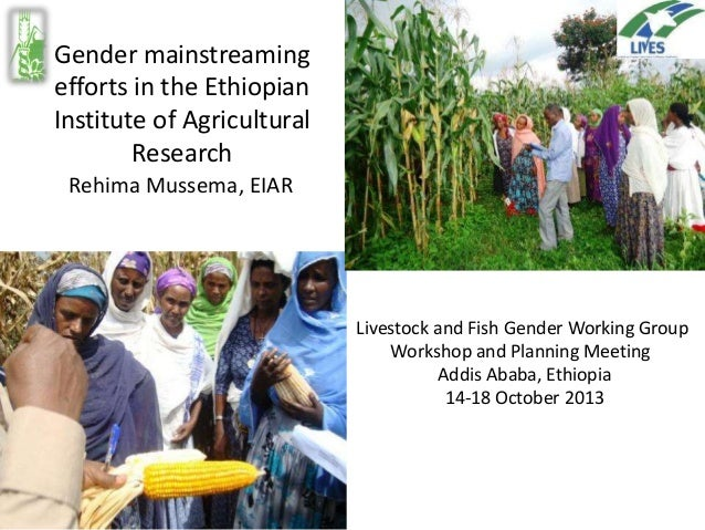 Gender mainstreaming efforts in the Ethiopian Institute of Agricultural Research Rehima Mussema, EIAR  EIAR Livestock and ...