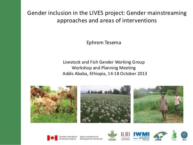 Gender inclusion in the LIVES project: Gender mainstreaming approaches and areas of interventions  Ephrem Tesema  Livestoc...