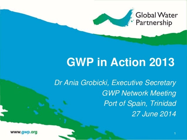 GWP in Action 2013 Dr Ania Grobicki, Executive Secretary GWP Network Meeting Port of Spain, Trinidad 27 June 2014 1