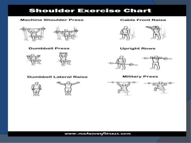 Shoulder Workout Charts
