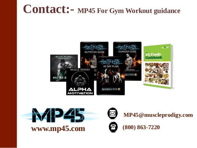 gym program for beginners pdf