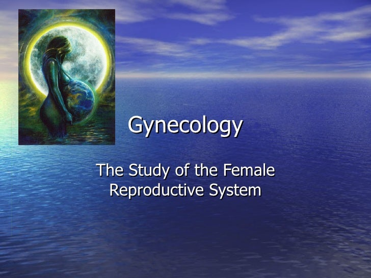 Gynecology The Study of the Female  Reproductive System