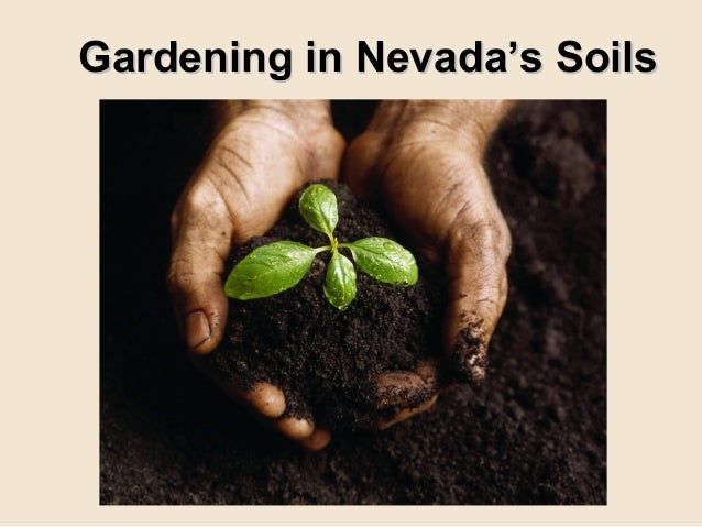 Gardening in Nevada's SoilsGardening in Nevada's Soils