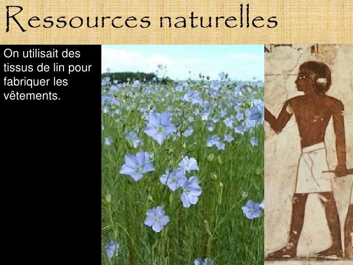 Ressources naturelles On utilisait des tissus de lin pour fabriquer les vêtements.