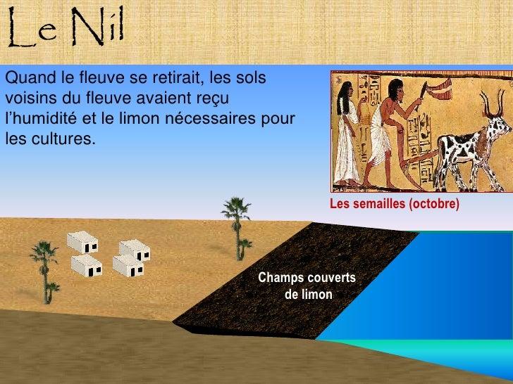 Le Nil Quand le fleuve se retirait, les sols voisins du fleuve avaient reçu l'humidité et le limon nécessaires pour les cu...