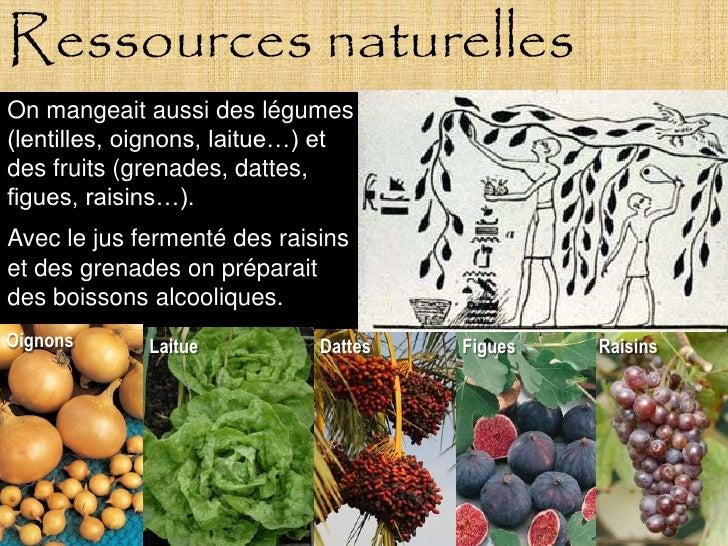 Ressources naturelles On mangeait aussi des légumes (lentilles, oignons, laitue…) et des fruits (grenades, dattes, figues,...