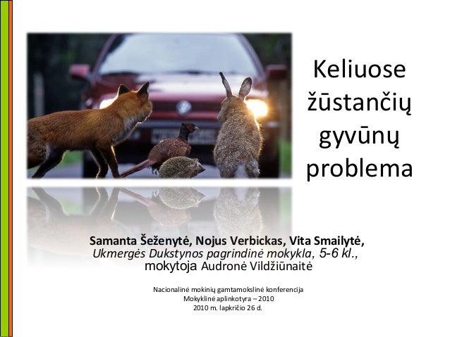 Keliuose žūstančių gyvūnų problema Samanta Šeženytė, Nojus Verbickas, Vita Smailytė, Ukmergės Dukstynos pagrindinė mokykla...