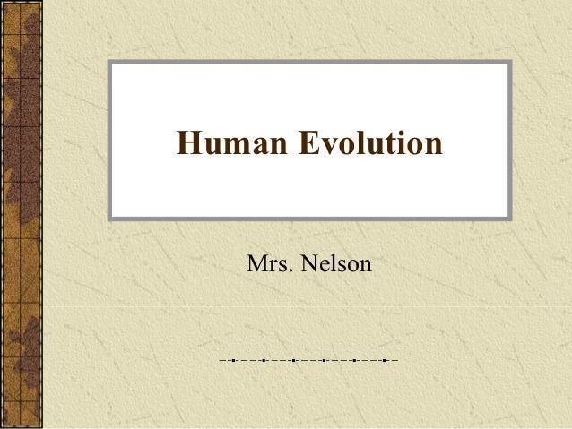 Human Evolution Mrs. Nelson