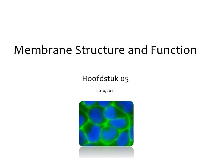 Membrane Structure and Function<br />Hoofdstuk 05<br />2010/2011<br />