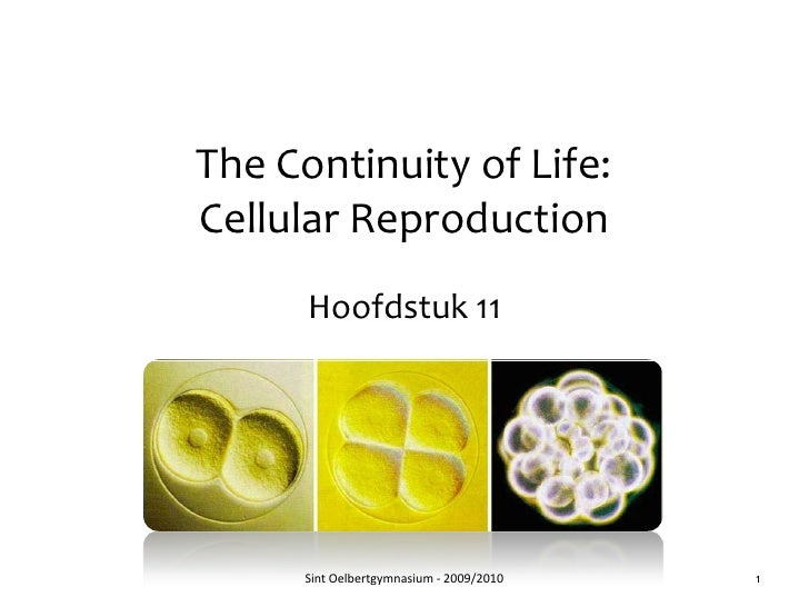 The Continuity of Life: Cellular Reproduction<br />Hoofdstuk 11<br />Sint Oelbertgymnasium - 2009/2010<br />1<br />