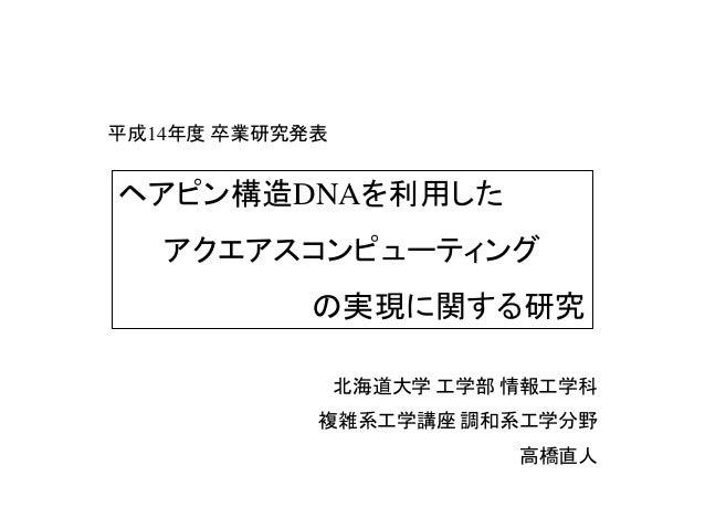 平成14年度 卒業研究発表 北海道大学 工学部 情報工学科 複雑系工学講座 調和系工学分野 高橋直人 ヘアピン構造DNAを利用した アクエアスコンピューティング の実現に関する研究