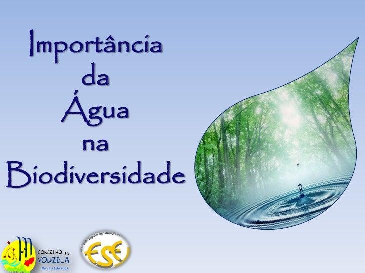 Importância       da     Água       na Biodiversidade