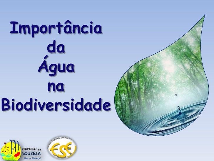 Importância <br />da<br />Água <br />na<br />Biodiversidade<br />