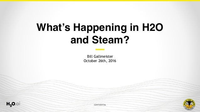 CONFIDENTIAL Bill Gallmeister October 26th, 2016 What's Happening in H2O and Steam?