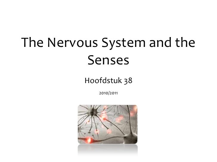 The Nervous System and the Senses<br />Hoofdstuk 38<br />Sint Oelbertgymnasium - 2009/2010<br />1<br />